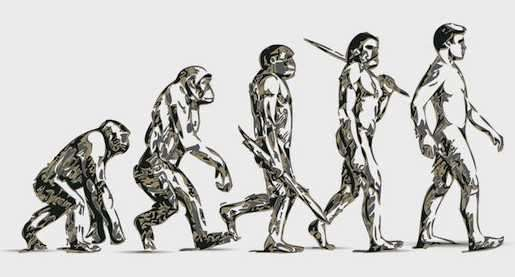 Are We Still Evolving? image