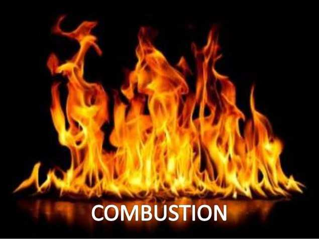 Class 8 Combustion And Flame - Fact
