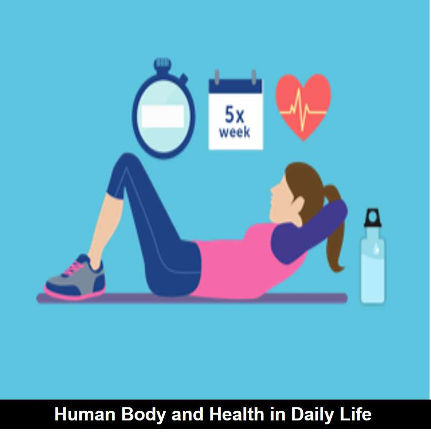 Example of Human body & health in daily life