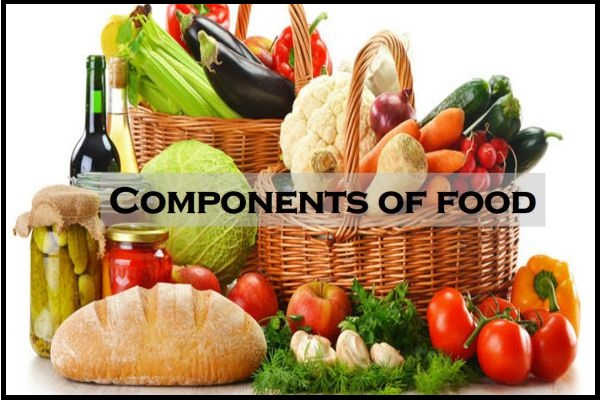 Example of Components of food in daily life
