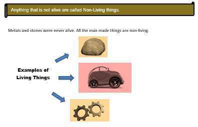 Living Non Living Things Lesson For Class 1