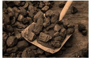 Science Class 8 Coal and Petroleum