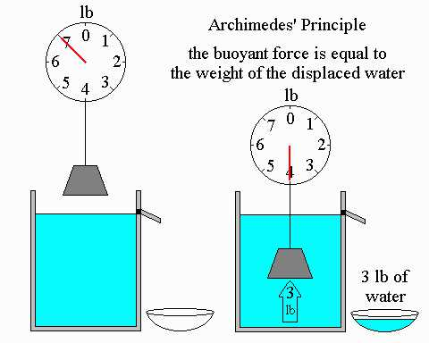 Science Class 9 Gravitation archimedes principle
