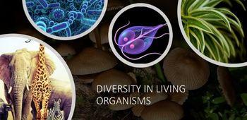 Diversity In Living Organisms
